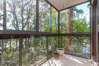 Photo 13: 303 1009 McKenzie Ave in VICTORIA: SE Quadra Condo Apartment for sale (Saanich East)  : MLS®# 813841
