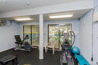 Photo 15: 303 1009 McKenzie Ave in VICTORIA: SE Quadra Condo Apartment for sale (Saanich East)  : MLS®# 813841