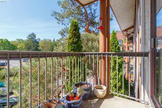 Photo 14: 303 1009 McKenzie Ave in VICTORIA: SE Quadra Condo Apartment for sale (Saanich East)  : MLS®# 813841