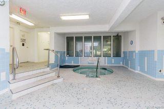 Photo 17: 303 1009 McKenzie Ave in VICTORIA: SE Quadra Condo Apartment for sale (Saanich East)  : MLS®# 813841
