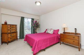 Photo 9: 303 1009 McKenzie Ave in VICTORIA: SE Quadra Condo Apartment for sale (Saanich East)  : MLS®# 813841