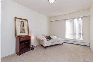 Photo 11: 303 1009 McKenzie Ave in VICTORIA: SE Quadra Condo Apartment for sale (Saanich East)  : MLS®# 813841