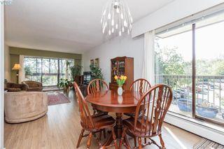 Photo 6: 303 1009 McKenzie Ave in VICTORIA: SE Quadra Condo Apartment for sale (Saanich East)  : MLS®# 813841
