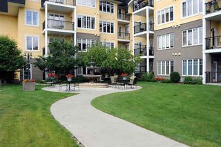 Photo 8: 105 9820 165 Street in Edmonton: Zone 22 Condo for sale : MLS®# E4169660