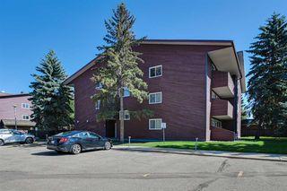 Main Photo: 2315 119 Street in Edmonton: Zone 16 Condo for sale : MLS®# E4176498