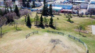 Photo 34: 6313 84 Avenue in Edmonton: Zone 18 House Half Duplex for sale : MLS®# E4195973
