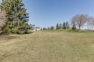 Photo 32: 6313 84 Avenue in Edmonton: Zone 18 House Half Duplex for sale : MLS®# E4195973
