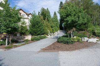 "Photo 18: 13 20350 68TH Avenue in Langley: Willoughby Heights Townhouse for sale in ""Sunridge"" : MLS®# F1106051"