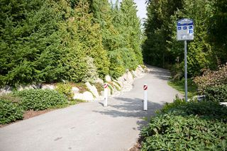 "Photo 17: 13 20350 68TH Avenue in Langley: Willoughby Heights Townhouse for sale in ""Sunridge"" : MLS®# F1106051"