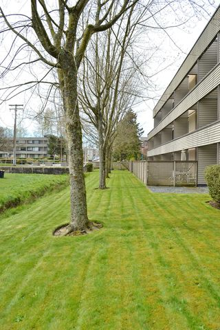 Photo 35: 107 15313 19TH Avenue in Surrey: King George Corridor Condo for sale (South Surrey White Rock)  : MLS®# F1209721