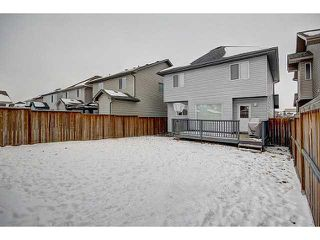 Photo 20: 56 PRESTWICK Close SE in Calgary: McKenzie Towne Residential Detached Single Family for sale : MLS®# C3652388