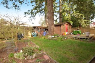 "Photo 24: 12373 NEW MCLELLAN Road in Surrey: Panorama Ridge House for sale in ""Panorama Ridge"" : MLS®# F1433996"