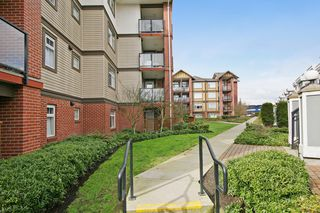 "Photo 17: 149 5660 201A Street in Langley: Langley City Condo for sale in ""PADDINGTON STATION"" : MLS®# R2045858"