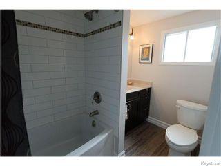 Photo 17: 221 Walnut Street in Winnipeg: West End / Wolseley Residential for sale (West Winnipeg)  : MLS®# 1609946