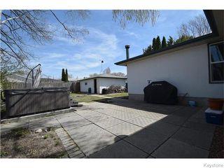 Photo 19: 31 Briar Cliff Bay in Winnipeg: Fort Garry / Whyte Ridge / St Norbert Residential for sale (South Winnipeg)  : MLS®# 1611383