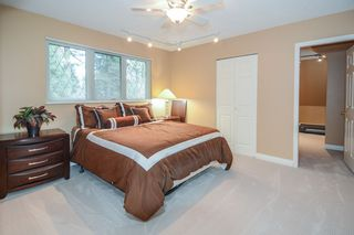 Photo 7: 21341 124 Avenue in Maple Ridge: West Central House for sale : MLS®# R2096539