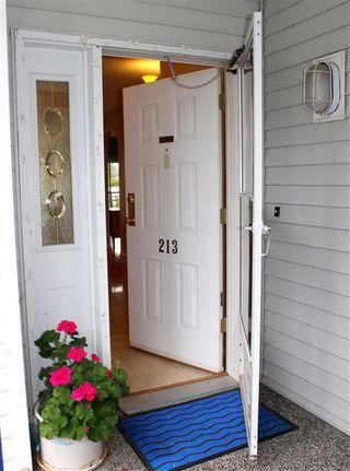 "Photo 4: 213 4955 RIVER Road in Delta: Neilsen Grove Condo for sale in ""SHOREWALK"" (Ladner)  : MLS®# R2099850"