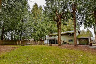 Photo 15: 12750 60 Avenue in Surrey: Panorama Ridge House for sale : MLS®# R2149288