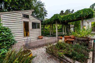 Photo 19: 1713 57 Street in Delta: Beach Grove House for sale (Tsawwassen)  : MLS®# R2203201