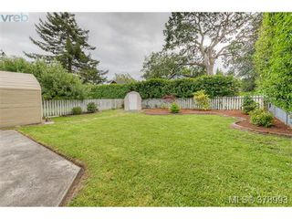 Photo 6: 1817 Newton Street in VICTORIA: SE Camosun Residential for sale (Saanich East)  : MLS®# 378993