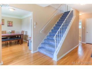Photo 7: 1817 Newton Street in VICTORIA: SE Camosun Residential for sale (Saanich East)  : MLS®# 378993