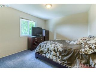 Photo 3: 1817 Newton Street in VICTORIA: SE Camosun Residential for sale (Saanich East)  : MLS®# 378993