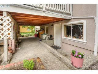 Photo 8: 1817 Newton Street in VICTORIA: SE Camosun Residential for sale (Saanich East)  : MLS®# 378993