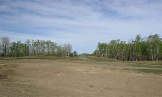 Photo 21: 8 53214 RGE RD 13 Road: Rural Parkland County Rural Land/Vacant Lot for sale : MLS®# E4099589