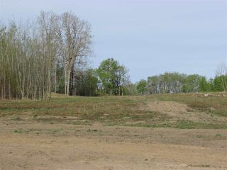 Photo 6: 8 53214 RGE RD 13 Road: Rural Parkland County Rural Land/Vacant Lot for sale : MLS®# E4099589