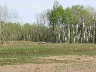 Photo 4: 8 53214 RGE RD 13 Road: Rural Parkland County Rural Land/Vacant Lot for sale : MLS®# E4099589