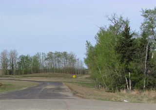 Photo 8: 8 53214 RGE RD 13 Road: Rural Parkland County Rural Land/Vacant Lot for sale : MLS®# E4099589