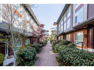 "Photo 19: 2 16223 23A Avenue in Surrey: Grandview Surrey Townhouse for sale in ""THE BREEZE"" (South Surrey White Rock)  : MLS®# R2260515"