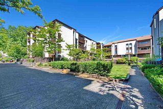 Photo 1: 14 365 GINGER Drive in New Westminster: Fraserview NW Townhouse for sale : MLS®# R2314550