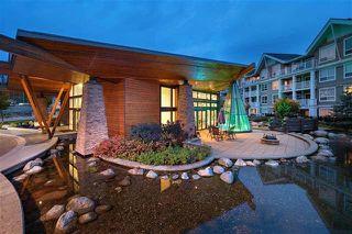 "Photo 1: 411 6440 194 Street in Surrey: Clayton Condo for sale in ""Waterstone"" (Cloverdale)  : MLS®# R2338363"