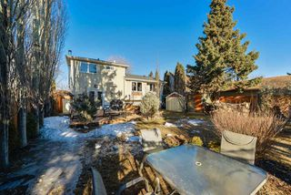 Photo 4: 9 GREYSTONE Drive: Spruce Grove House for sale : MLS®# E4151181