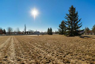 Photo 29: 9 GREYSTONE Drive: Spruce Grove House for sale : MLS®# E4151181