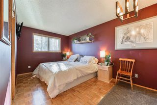 Photo 21: 9 GREYSTONE Drive: Spruce Grove House for sale : MLS®# E4151181