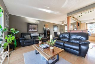 Photo 12: 9 GREYSTONE Drive: Spruce Grove House for sale : MLS®# E4151181
