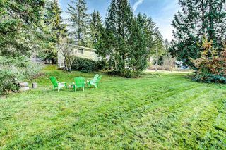 Photo 19: 11467 272 Street in Maple Ridge: Thornhill MR House for sale : MLS®# R2366531