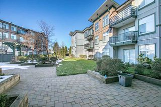 "Photo 13: 118 8183 121A Street in Surrey: Queen Mary Park Surrey Condo for sale in ""CELESTE"" : MLS®# R2376190"