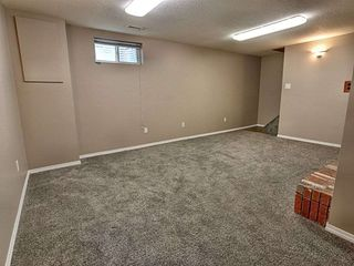 Photo 20:  in Edmonton: Zone 20 Townhouse for sale : MLS®# E4161288