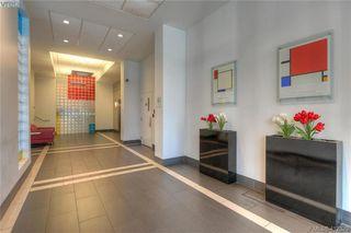 Photo 5: 204 1090 Johnson St in VICTORIA: Vi Downtown Condo Apartment for sale (Victoria)  : MLS®# 817629