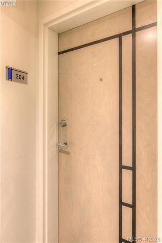 Photo 6: 204 1090 Johnson St in VICTORIA: Vi Downtown Condo Apartment for sale (Victoria)  : MLS®# 817629