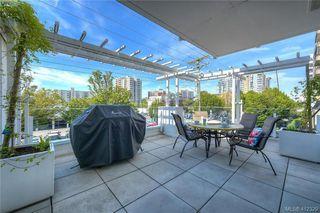Photo 22: 204 1090 Johnson St in VICTORIA: Vi Downtown Condo Apartment for sale (Victoria)  : MLS®# 817629