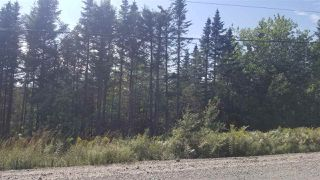 Main Photo: Lot 1 Moose River Road in Lindsay Lake: 35-Halifax County East Vacant Land for sale (Halifax-Dartmouth)  : MLS®# 201921607