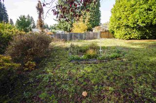 Photo 13: 1420 DANSEY Avenue in Coquitlam: Central Coquitlam House for sale : MLS®# R2418241