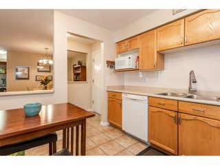 "Photo 8: 205 2083 COQUITLAM Avenue in Port Coquitlam: Glenwood PQ Condo for sale in ""TIFFANY COURT"" : MLS®# R2422423"