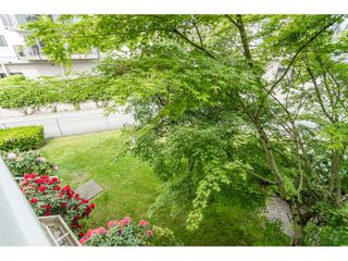 "Photo 18: 205 2083 COQUITLAM Avenue in Port Coquitlam: Glenwood PQ Condo for sale in ""TIFFANY COURT"" : MLS®# R2422423"