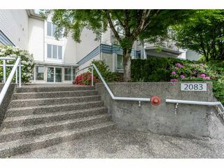 "Photo 1: 205 2083 COQUITLAM Avenue in Port Coquitlam: Glenwood PQ Condo for sale in ""TIFFANY COURT"" : MLS®# R2422423"