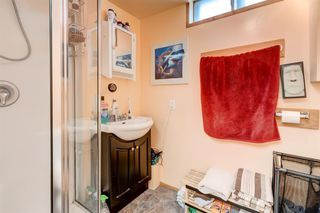 Photo 26: 15 APPLETREE Close SE in Calgary: Applewood Park Detached for sale : MLS®# A1012347